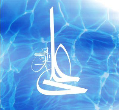 «کلّ شیء هالک إلا وجهه»؛ گفته اند امام علی (ع) وجه الله است. معنای آن چیست؟