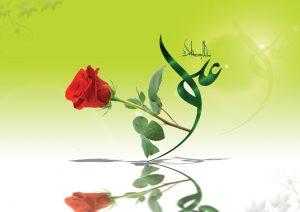 فعالیت های حضرت علی (علیه السلام) در زمان سکوت