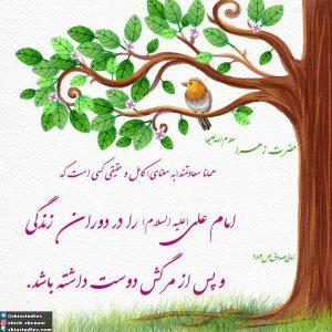 حضرت زهرا(سلام الله علیها):