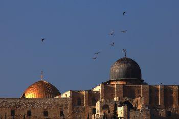 ویدئو ۳۶۰ مسجد الاقصی