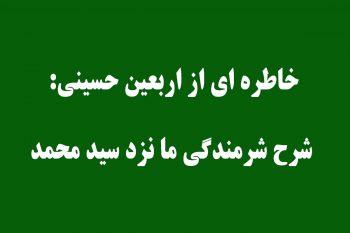 خاطره ای از اربعین حسینی: شرح شرمندگی ما نزد سید محمد