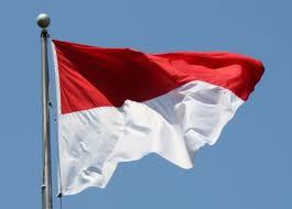 ظهور اسلام گرایى رادیکال در اندونزى