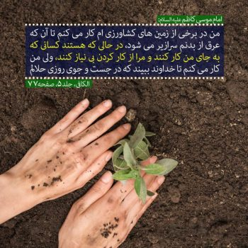 امام موسی کاظم علیه السلام فرمودند: